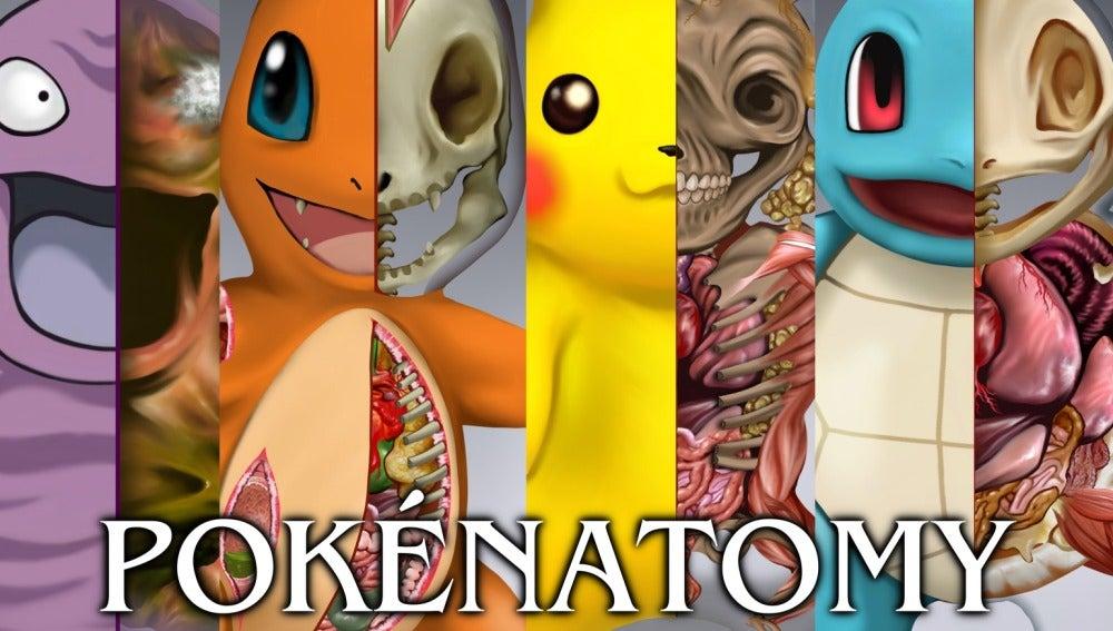 NEOX GAMES | Pokémon ya tiene su propio libro de anatomía