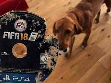 FIFA 18 destrozado por Sam