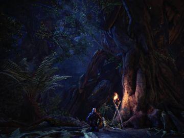 The Witcher en Monster Hunter World