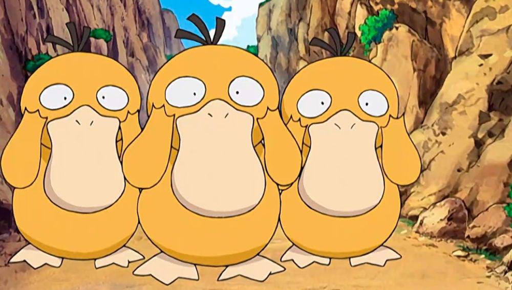 Pokémon - Temporada 11 - Capítulo 35: La barrera de los Psyduck