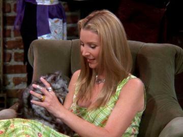 La madre de Phoebe se reencarna en un gato