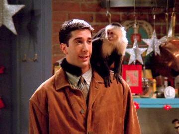 Ross presenta a su mono Marcel