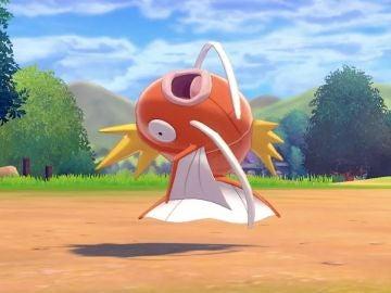 Pokémon Magikarp