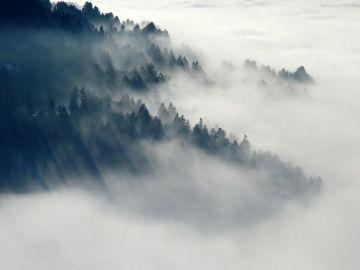 Colina con niebla