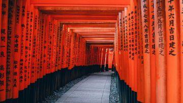 Arcos Tori en Kioto