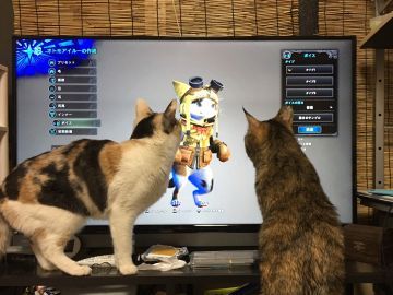 Gatos observando Monster Hunter World