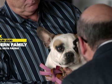 'Modern Family: Especial Vaya fauna', el miércoles en Neox