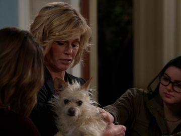 Los Dunphy buscan al dueño de este perro