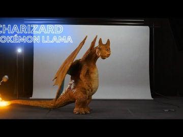 Charizard (Pokémon llama)