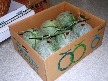 Melones Yubari King