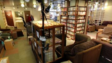 Neko no Iru Kyukeijo 299 / Cat Rest Stop 299