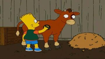 Bart y su ternero
