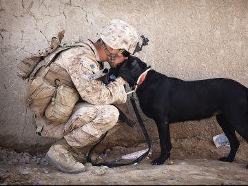 Soldado con su perro